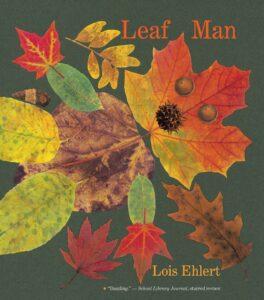 Leaf Man book cover